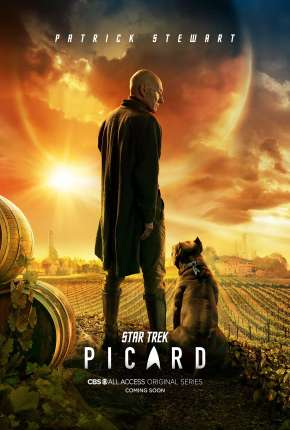 Star Trek - Picard - 1ª Temporada Torrent Download