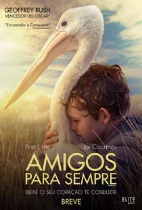 Amigos Para Sempre - Storm Boy Torrent Download